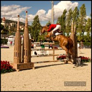 International-Jumping-Competition-2013-Barcelona-3-Picture
