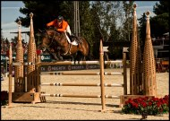International-Jumping-Competition-2013-Barcelona-18-Picture