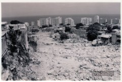 Vargas-1999-image-20