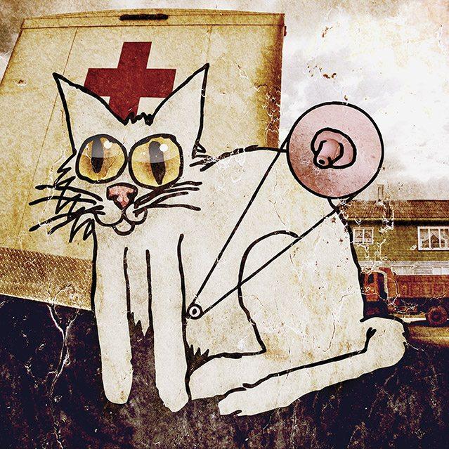 'Catnip,' mixed media image by David Yow.