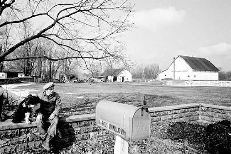 James Dean at his Uncle Marcus Winslow's farm.