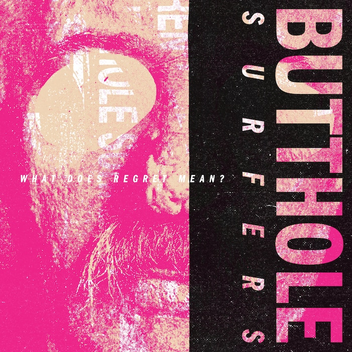 Butthole Surfers book cover