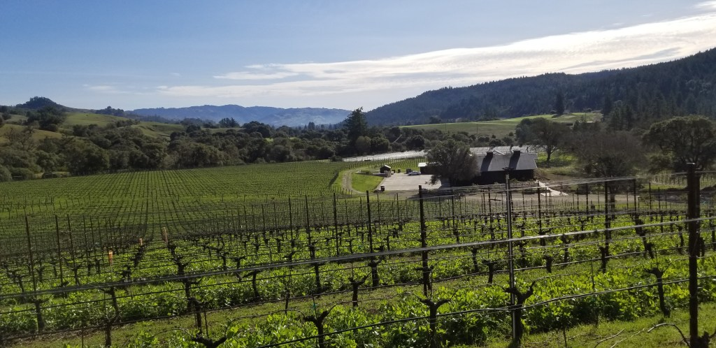 7 Can't Miss Wineries to Add to Your Anderson Valley Itinerary