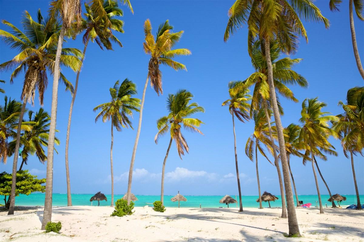 Trebuie sau nu trebuie să facem vaccin înainte de plecarea în Zanzibar?