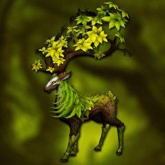 forest_deer