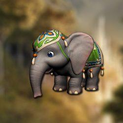 pet_elephant1
