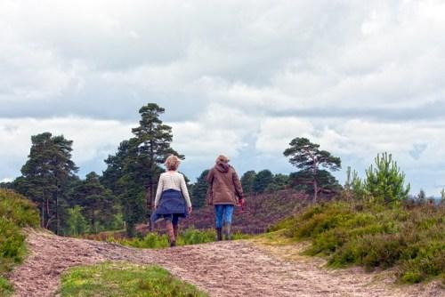 Marcheurs dans la nature