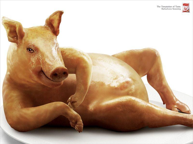sexist meat seasoning ad 2