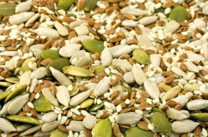 seeds protein