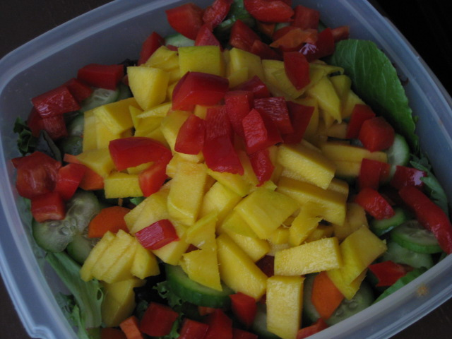 2009_05_28_salad