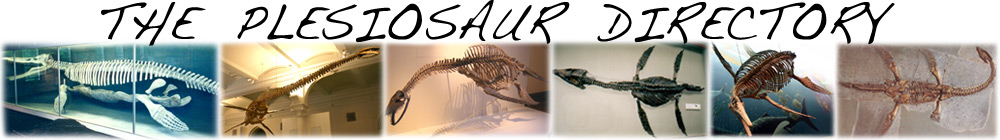 Plesiosaur Directory