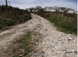 Longing for Dutch Hiking on Holyhead Mountain
