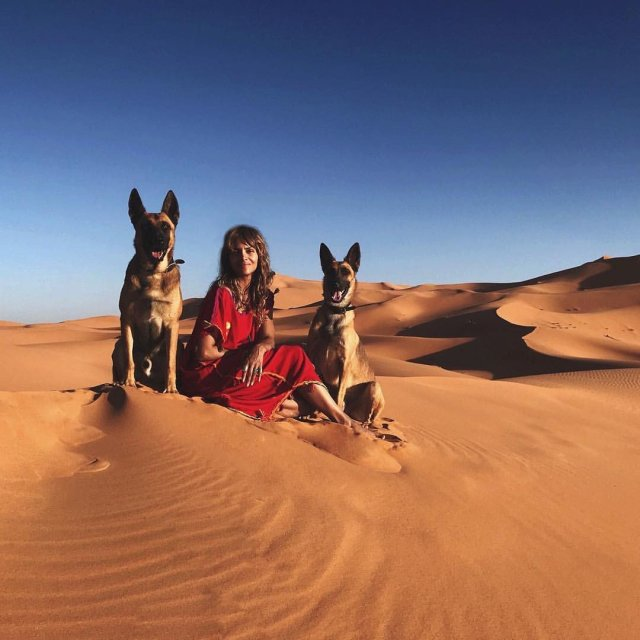 Halle Berry es Sofía en John Wick: Chapter 3 – Parabellum (2019). Imagen: John Wick Twitter (@JohnWickUK).