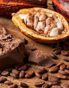 Millefiori Cacoa Blanc & Woods