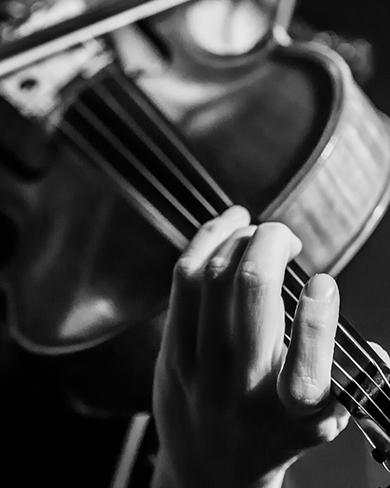 Violin as part of a High Performing Team music ensemble