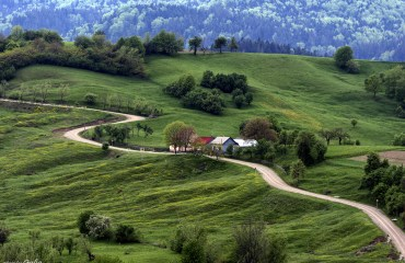 Primăvară în Bucovina cu noi