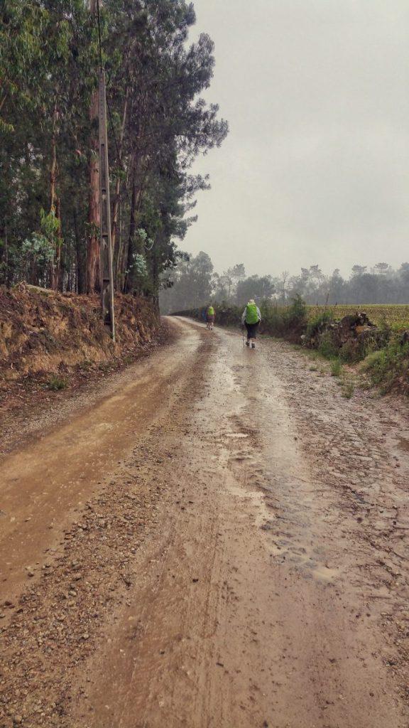 A doua zi pe Camino