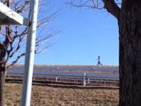 講習会の前に江戸川堤防を走っているかのように歩いている陸歩クラブの方。