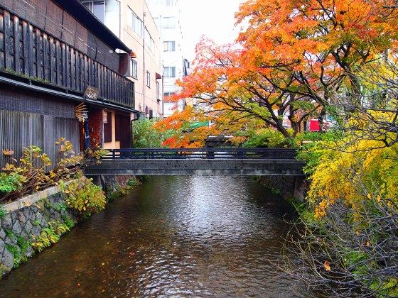 Shirakawa Gion Autumn Colors - Most Beautiful Street in Kyoto