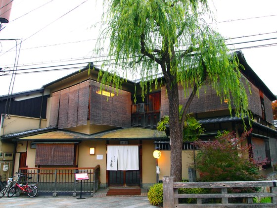 Shirakawa Gion in Kyoto - Willow Trees