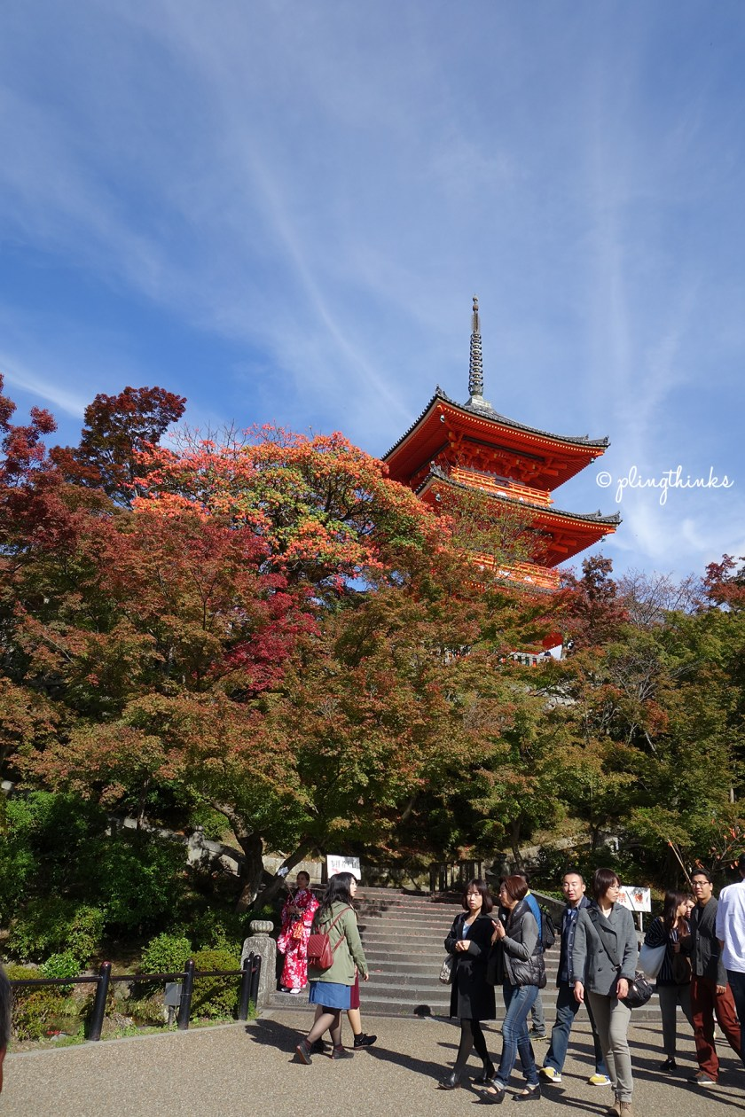 Pagoda Maple Leaves - Kiyomizu Kyoto