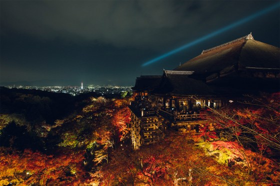 Nighttime Illumination Autumn Maple - Kiyomizu Kyoto