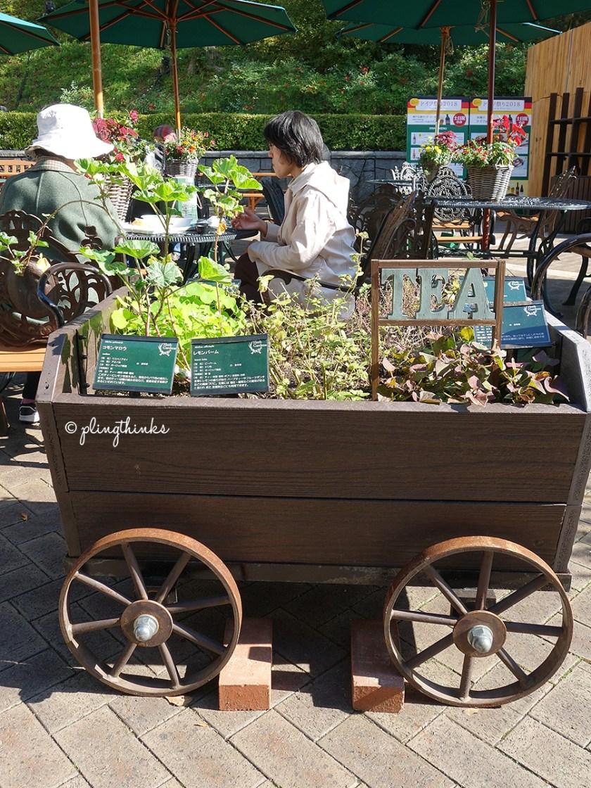 Herbs Tea - Kobe Nunobiki Herb Garden