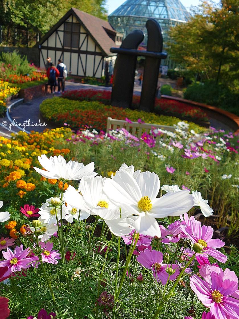 Kobe Nunobiki Herb Gardens - Flower Park