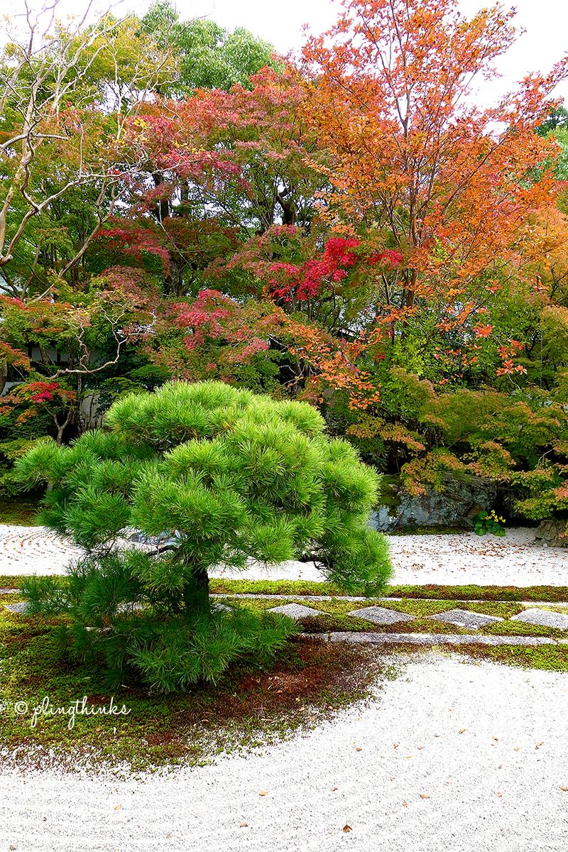 Nanzenji Temple Tenjuan Garden - Autumn Kyoto