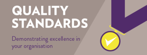 quality standards in healthcare
