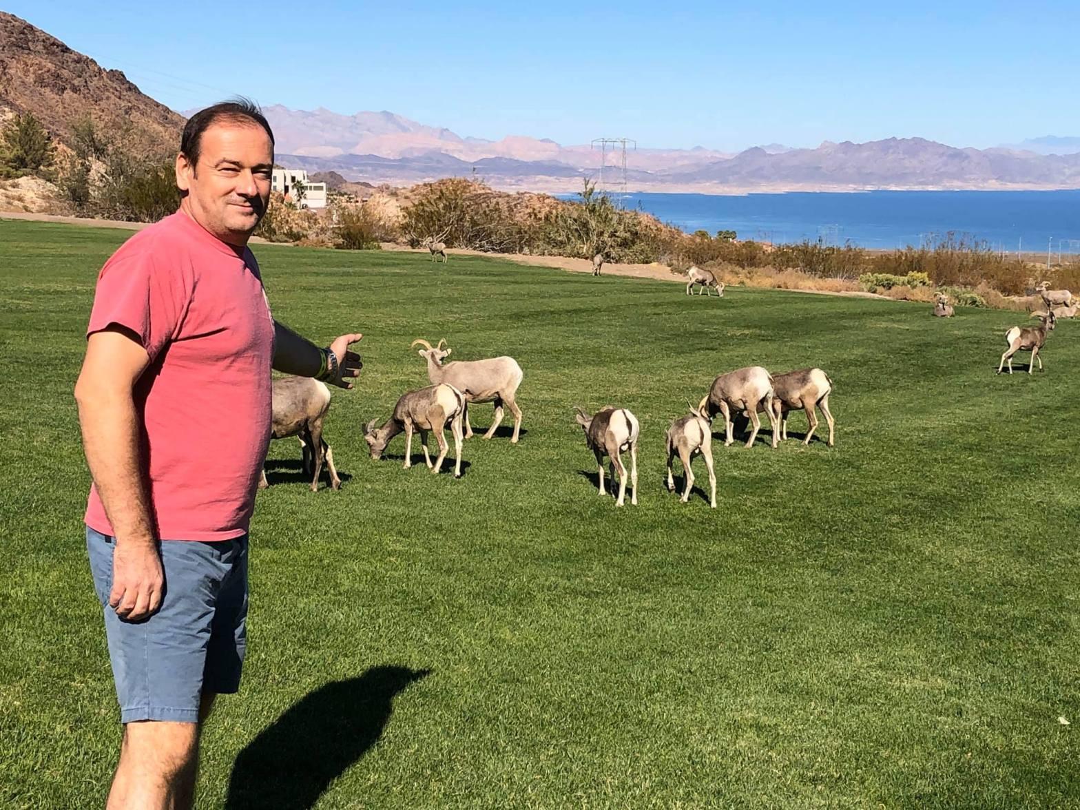 Ilir Seci në Nevada, me dhentë e egra në prapavijë