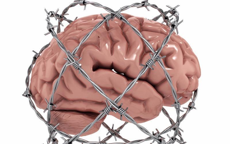 cerebro en alambre de púas