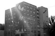 murale - Motyle i Chłopiec