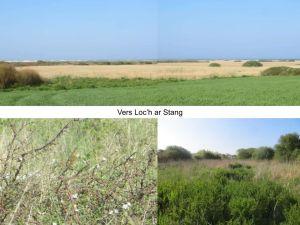 Zones Humides : autour de Loch Ar Stang