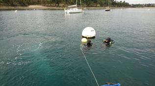 Deux plongeurs