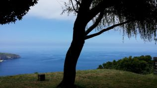 Açores REDUC-20190814_144333