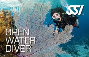 SSI - Open Water Diver certification card