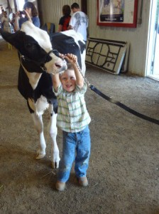 dairy pee-wee showmanship