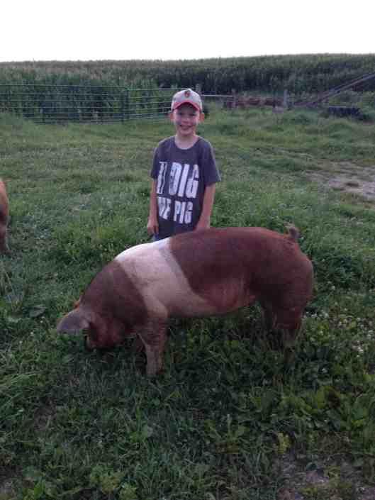 I dig the pig
