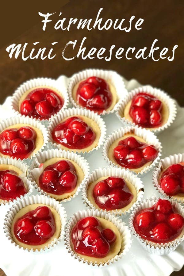 This quick and easy recipe makes small servings of cherry cheesecake.  This easy mini cheesecake recipe is great for parties and holiday meals too.