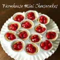 easy individual cheesecakes