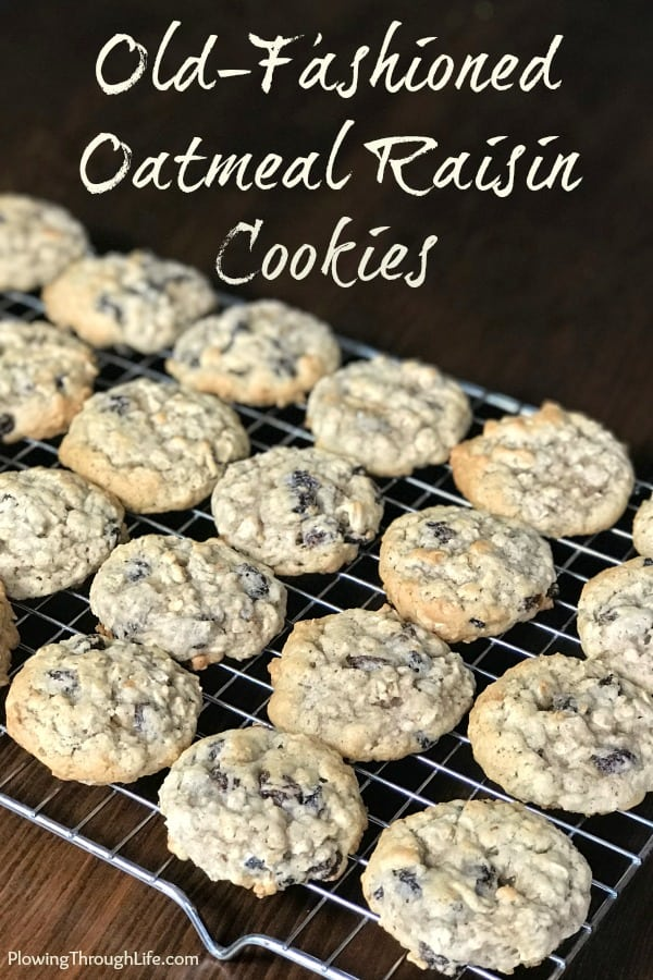 My husband was craving a classic oatmeal cookie, so he made this old-fashionedoatmeal raisin cookie recipe from our family archives. We agreed that this is the best Oatmeal Cookie we've ever eaten! #cookies #cookierecipe #oatmealcookie