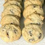 Dark chocolate chip and oatmeal cookies in a rows on a paper towel