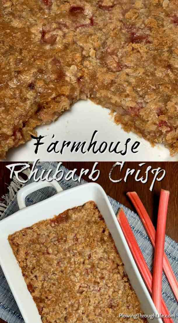 This Farmhouse Rhubarb Crunch is a vintage recipe that's been in our family for generations. This easy dessert will remind you of days gone by, maybe gathered around a farmhouse table. #rhubarb