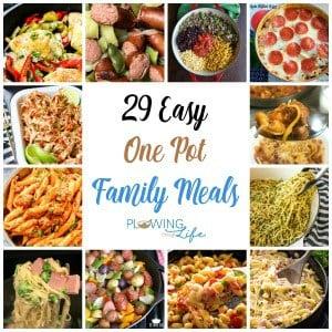 easy one pot family dinner ideas