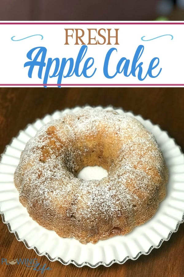 Fresh apples taste great in this easy cake that is perfect when served with vanilla ice cream