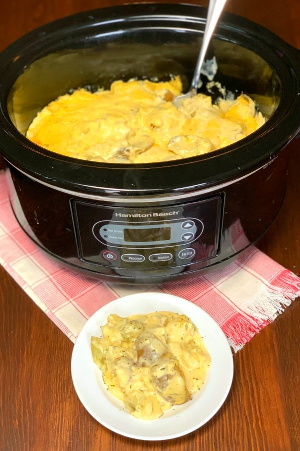 Easy Creamy Crock Pot Potatoes are a great complement to almost any meals.  Creamy potatoes have nice mild, yet gourmet flavor with a hint of onion and cheese.  We love making easy crock pot potatoes for family meals or potlucks.