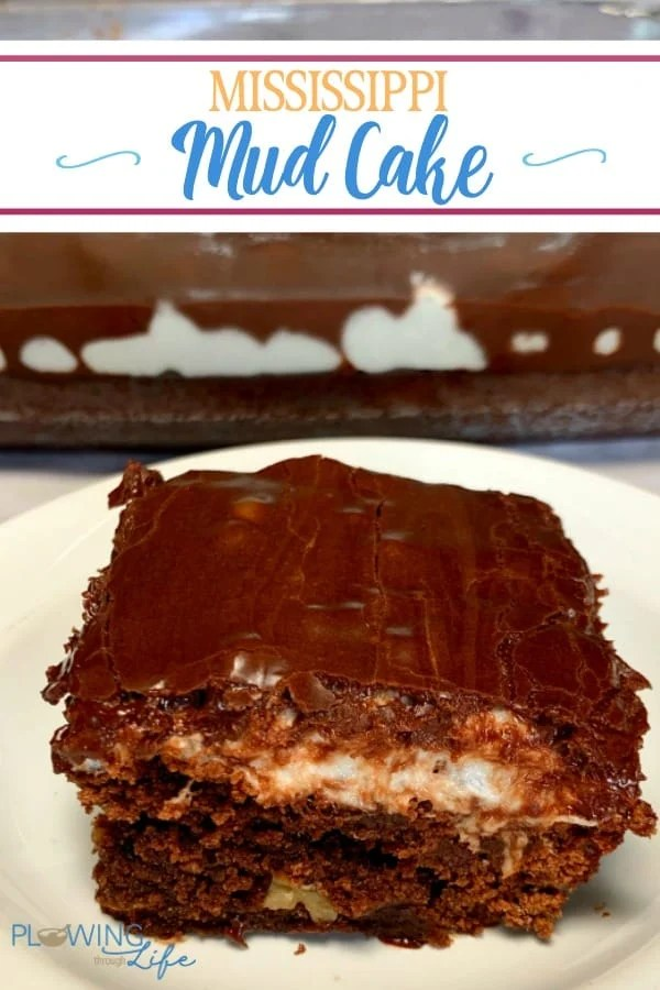 Our Easy Mississippi Mud Cake is a basic homemade chocolate cake with a layer of marshmallows melted between the cake and icing.  This old fashioned cake is so easy to make and the marshmallow layer is a fun surprise!
