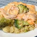 Easy meal Crock Pot Broccoli and Turkey with Cheddar Cheese Sauce