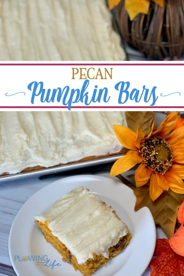 Pecan Pumpkin Bars with Cream Cheese Icing is an easy pumpkin recipe with cream cheese has been a long-time family favorite!